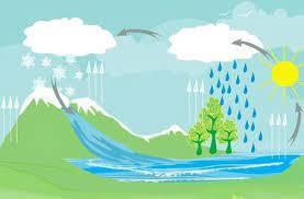 المطر